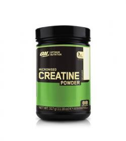 ON Micronised Creatine Powder - 317g